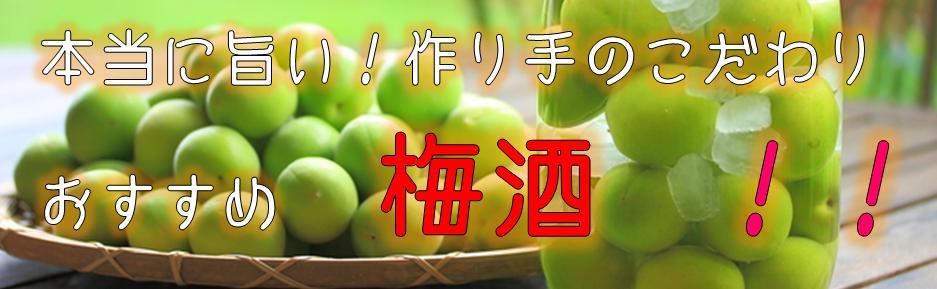 梅酒,umesyu,おすすめ,うめしゅ,人気,ランキング,美味しい,旨い,さっぱり,甘口,飲みやすい