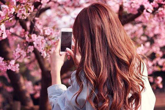 花見,おすすめ,ナンパスポット,春,人気ランキング,必勝法,中出し,巨乳,素人,画像,動画