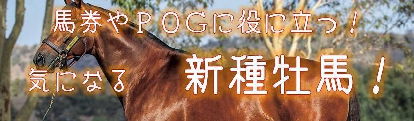 種牡馬,2018,デビュー,産駒,特徴,情報,馬体,血統表,データ,新種牡馬,pog,2019,おすすめ,クラシック候補