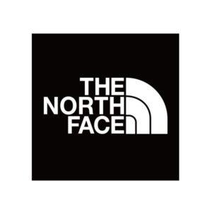 ノースフェイス,新作,おすすめ,2019,かっこいい,ストリートファッション,カジュアル,人気ランキング